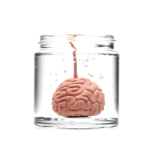 FORMALIN CANDLE - BRAIN