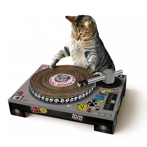 CAT SCRATCHING DJ DECKS